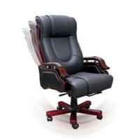 Leather Chair TQ01