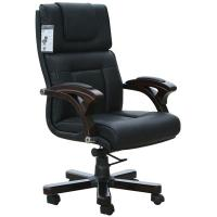 Leather Chair TQ10